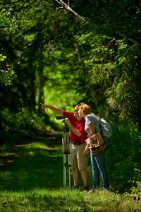 îles du St Laurent, sentier, observation des oiseaux, ornithologie, pointe est, Jocelyn Landry, Sarah Moore